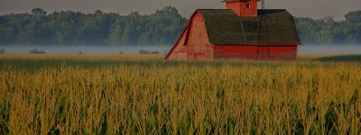 farm and crop insurance in O'Fallon STATE | DeWitt Insurance